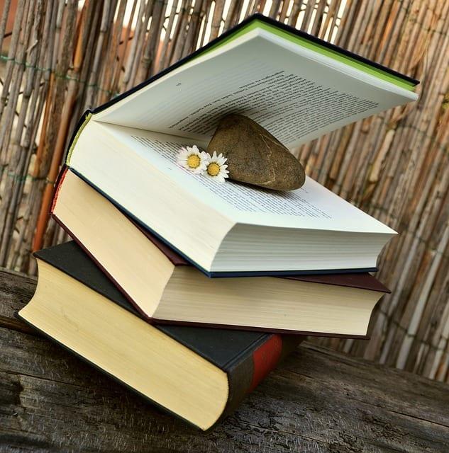 books-676420_640