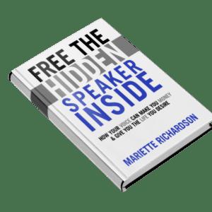 Free Hidden Speaker